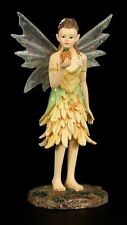 Faerie Glen *Salutotyme* Woodland Fairy Figurine FG8863 ~ RETIRED, BNIB