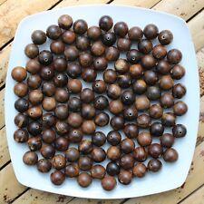 16 MM Aetoxylon Agarwood Loose Beads Indonesian Gaharu Buaya Aloeswood 750 Gram