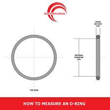 BS120 PTFE O Ring Quantity 10