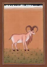 Indian Ram Animal Painting Handmade Watercolor Nature Wild Life Miniature Art