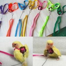 Pet Parrot Bird Harness & Leash Flying Rope Straps Training Traction Adjustable