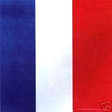 Bandana 55 cm PAYS FRANCE TRICOLORE bleu blanc rouge COUPE DU MONDE FOOT  LG