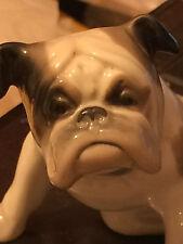 Porcelain Figurine Dog/  Bulldog Metzler & Ortloff,