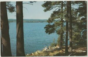 VINTAGE POSTCARD LAKE VIEW PANORAMA UNDER COMFORT OF FOLIAGE