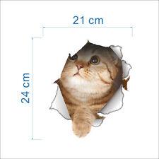 3D Effect Ginger Cat Breaking Through decal Wall Sticker Poster 14147