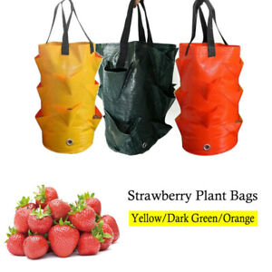 3 Gal Garden Hanging Planter-Grow Bag Plant Pouch Tomato Strawberry Flower Bags