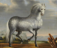 """perfect  30x30 oil painting handpainted on canvas """"a  horse """"13748"""