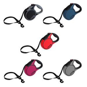 KONG Terrain Retractable Extendable Tape DOG Lead Leash - All colours and sizes!