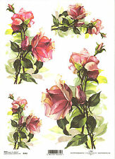 Rice Paper for Decoupage Scrapbooking, Pink Roses Flowers A4 ITD R392