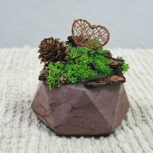 Interior Design Miniature Florist Natural Materials Handmade Love Romance Nature