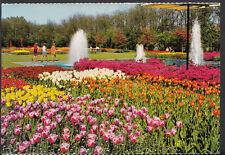 Netherlands Postcard - Holland in Flower Decoration  B1276