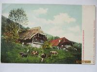 Bauernhäuser im Schwarzwald, Verlag Fleig in Hornberg (3500)