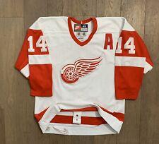 Rare Nike Detroit Red Wings Brendan Shanahan 14 NHL Hockey Jersey Sz 48 Xl Fugh