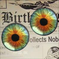 Hazel Glass Eyes Taxidermy Realistic Doll Eyeball 16mm Set