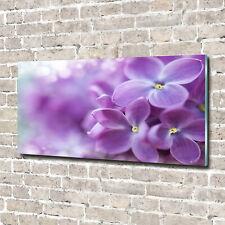Acrylglas-Bild Wandbilder Druck 140x70 Deko Blumen & Pflanzen Lila Blumen