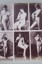 CALAVAS ETUDE DE NUS  TIRAGE ALBUMINE ALBUMEN VINTAGE PRINT 1880 PEINTURE ref15
