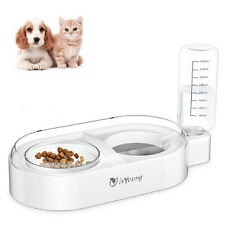 Cat Water Food Bowl Set Automatic Water Dispenser Detachable Glass Feeder Bowl