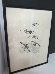 Richard Bishop etching ' In the Bag' Wildfowl~ Talio-crome reproduction print