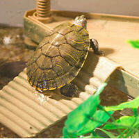 Tortoise Table Small Pet Reptile Sunbathing Island Fish Tank Aquarium Accessory