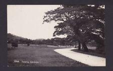 Malaya Malaysia 1900? Vintage Real Photo Postcard Penang Taiping Gardens