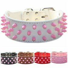 "Pink Spiked Studded Dog Collar 2"" Leather Dog Collar for Pit Bull Terrier"