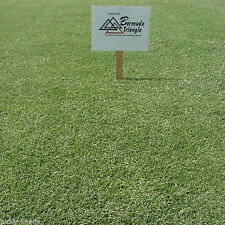 Pennington Triangle Bermuda Grass Seed - 1/2 Lb. (Covers 250 sq. ft.)