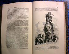 1860 GRANDVILLE JOLIES GRAVURES DANIEL DE FOE ROBINSON CRUSOE LIVRE BOOK ENFANTS