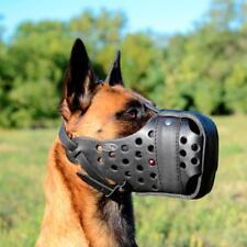 Belgian Malinois Dog Muzzles For