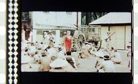 35mm Feature Film  INDOCHINA (1992)