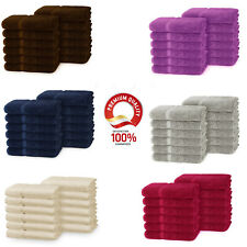 Soulmate 100% Cotton Luxury Large Washcloths / Face towels  (12 Pack, 13 X 13)