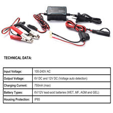 6V 12V Intelligent Fully Automatic Battery Float Charger Maintainer Jumper 0.75A