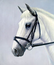 "High Quality Oill Painting ""Horse Portrait #132"" 24""x20"""