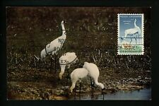US FDC Scott # 1098 NIM ( M-26 Sea Gull Stamp Club Variety ) related Post Card