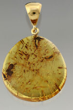 PLANT SPLINTS Genuine BALTIC AMBER Silver Gold Plated Pendant 7.2g p160818-24