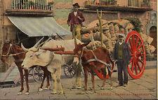 postcard - napoli - carro da trasporto . early 1900s