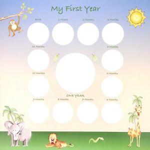 """808 Photo Mats for Baby's First Year   Birth to 12 Mos 12""""x12"""" Jungle Theme"""