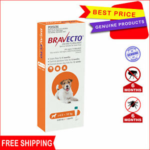 BRAVECTO Spot On 1 Pipette 4.5 to 10 Kg ORANGE 6 Months Flea treatment for Dogs