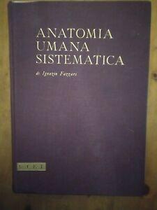 anatomia umana sistematica Ignazio Fazzari utet 1967