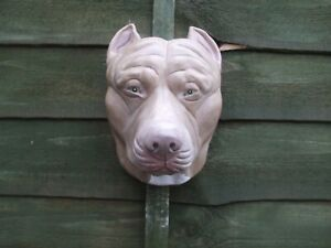LARGE STONE REALISTIC PAINTED AMERICAN PIT BULL TERRIER DOG WALL STATUE
