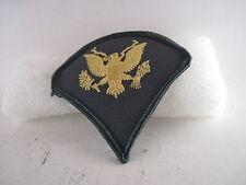US Army SPL  Chevron mint    patch  (t026)--