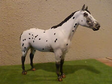 custom Breyer performance appaloosa