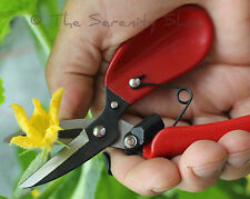 DARLAC GARDEN FLORAL FLORISTRY SHEARS / PRUNERS / SECATEURS FLOWER ARRANGING