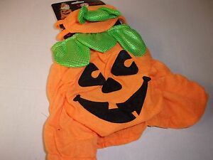 SALE PUMPKIN Cat Costume Halloween new Small puppy pet Petco S O/S dog kitty
