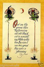 BLACK CAT SCREAMING OWL EYES GLEAMING HALLOWEEN rare Nash H-9 Antique Postcard