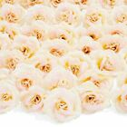 50pc Artificial Fake Champagne Rose Flower Head for Wedding Bouquet Home Decor