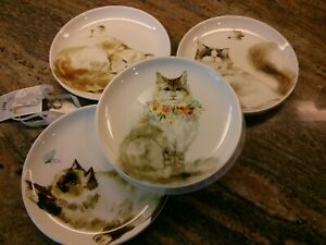 PIER 1 ~Curious Cats~ 4 Salad Plates Flowers Cats Cat Lover Dolomite New Set