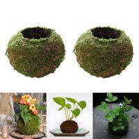 3pcs Creative Moss Ball Flower Pot Planter Bonsai Plant Holder Garden Decor