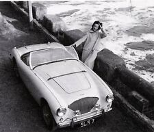 1956 Austin Healey 100M Factory Photo ua1879-1EEHQA