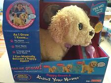 FISHER PRICE PUPPY GROWS & KNOWS NAME PODDLE INTERACTIVE DOG TOY (TAN) NIB