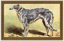 LE LEVRIER RUSSE OU BARZOI Barsoi Windhund Jagd MAHLER 61 gerahmt